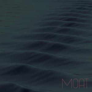 MOAT LP SLEEVE